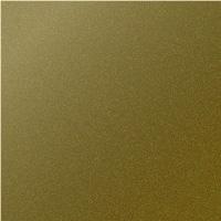Safari Gold / BO8440001