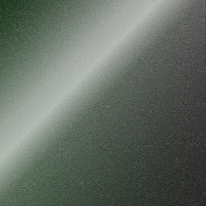 Dark Grey/Green / BX8120001