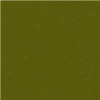 Yellow Green / AP2260001