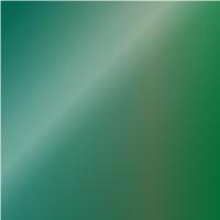 Dark Green - O / BP2340001